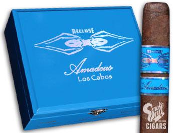 Recluse Amadeus Los Cabos