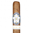 Room 101 FARCE Maduro Magnum - 5 Pack